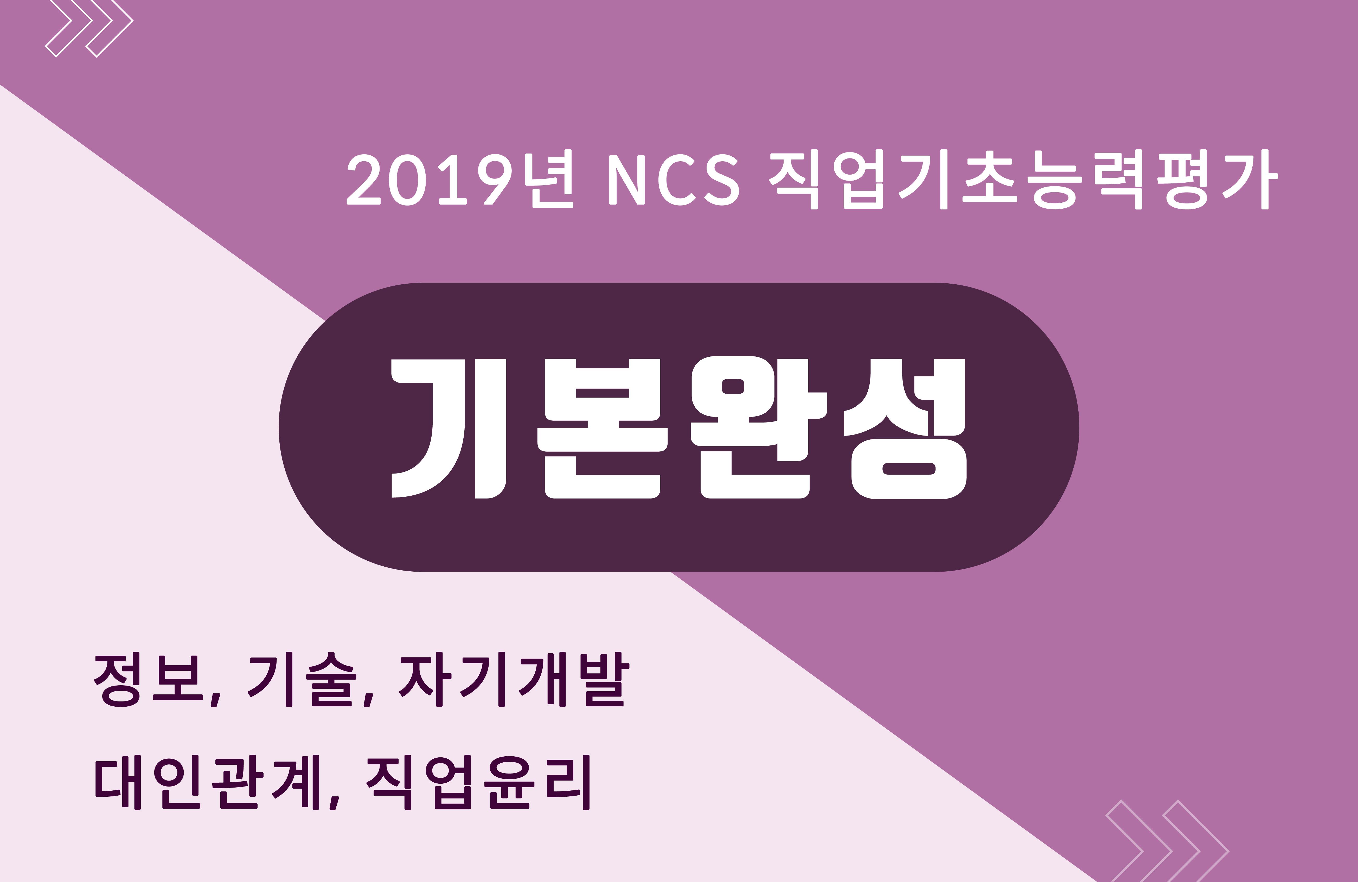 [진짜기출에서 뽑은 256개 유형] 2019 NCS 직업기초능력평가 기본완성 - 정보, 기술, 자기개발, 대인관계, 직업윤리